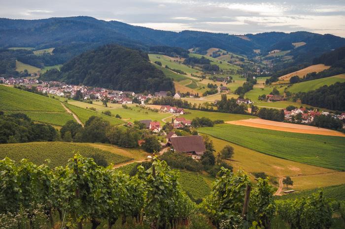Schwarzwald Mountainbike